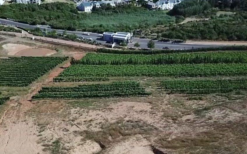 Weltevreden Hills Estate – Stellenbosch